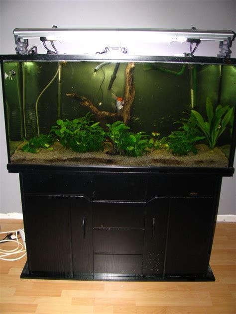 aquarium en coin a vendre aquariums 224 vendre