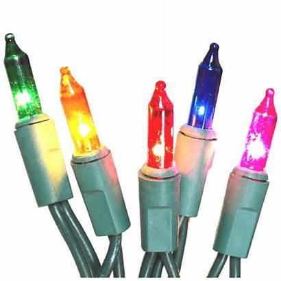 Bulbs Replacement Christmas Miracle Led Change Christmaslightsetc