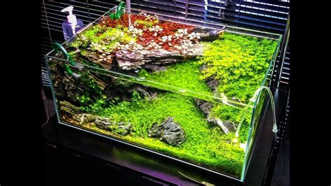 Aquascape Ideas by Best Aquascape Design Ideas 2017