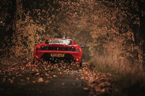 car ferrari leaves road wallpapers hd desktop