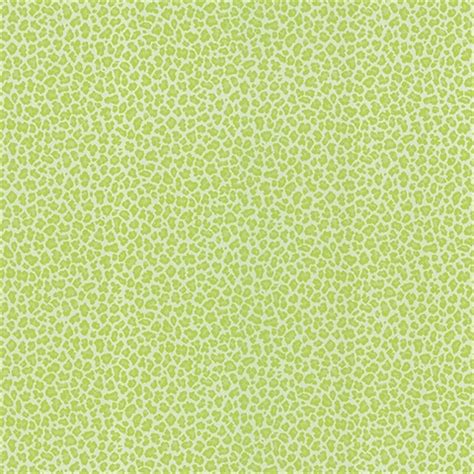Green Animal Print Wallpaper - ng62506 bambam green animal print wallpaper wallpaper