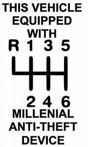 Stick Shift Decal  Millenial  Anti Theft Device  Funny