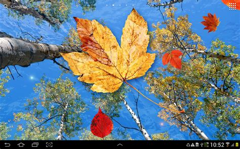 Falling Leaves Live Fall Backgrounds by Autumn Leaves Live Wallpaper Android Apps On Play