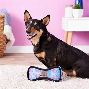 Kong ballistic bone dog toy color varies large chewycom for Ballistic dog