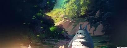 Totoro Neighbor Dual Standard
