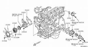 D22 Nissan Navara 2003 Position Of Thermostat  Is It A Big
