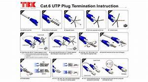 Cat6 Standard Utp Rj45