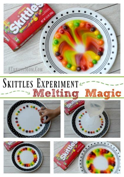 skittles experiment melting magic quick  easy science