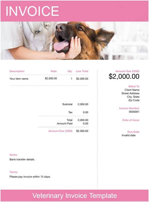 veterinary invoice template   send  minutes