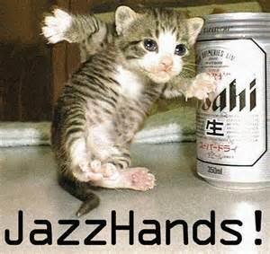 jazz cat jazz cat kit cat kitty cat