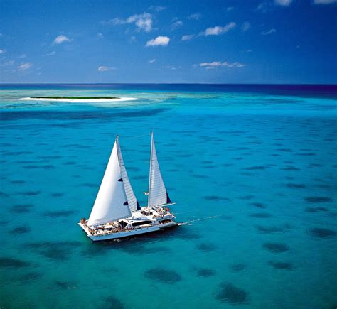 cairns great barrier reef tour michaelmas cay brilliant