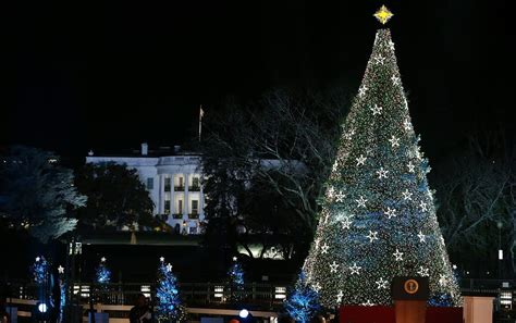 president obama lights national tree minnesota
