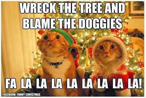 Cat Christmas Memes - cute and funny pictures and more what christmas is like when you have cats