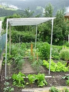 Gewächshaus Für Tomaten Selber Bauen : kraut r ben forum mein tomatendach ~ Markanthonyermac.com Haus und Dekorationen