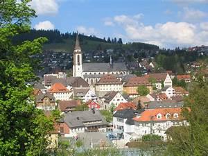 FIS Ski Jumping World Cup Titisee Neustadt 2015 True