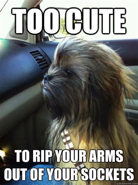 Chewbacca Memes - cute chewbacca meme memes quickmeme