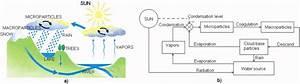 Natural Water Cycle Simplified Diagram
