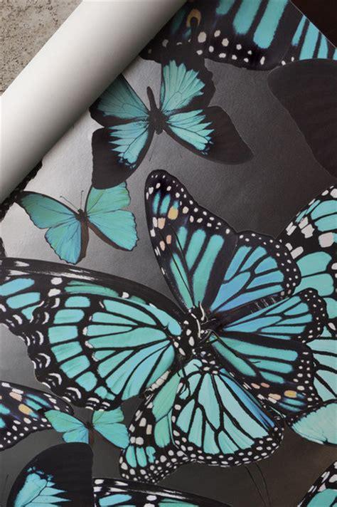 butterflies wallpaper  yards contemporary wallpaper