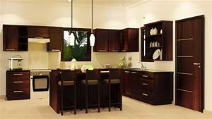 pantry designs - Modern - Kitchen - by Golden Age Interior