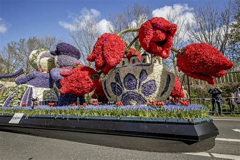 Lotus flowers, for example, have been regarded as the national flower. Bloemencorso 2017: the most beautiful floral parade in the ...