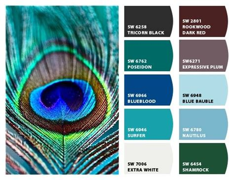 87 best color palette for peacocks images on
