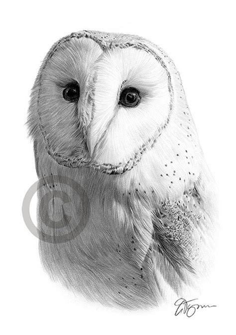pet portraits pencil drawings  signed artwork prints