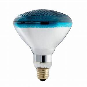 Philips autism speaks watt incandescent br blue