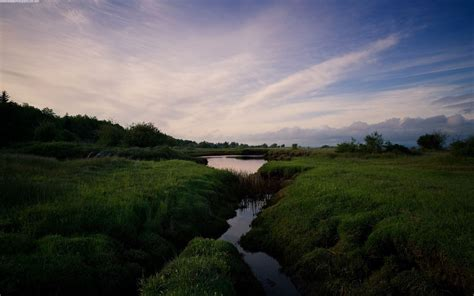 nature marshland sunset picture nr
