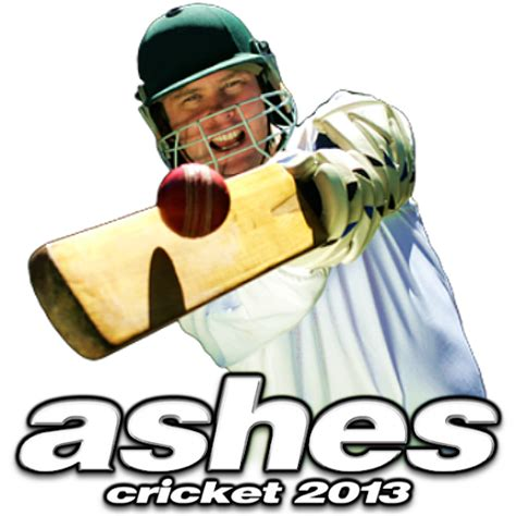 ashes cricket 2013 by pooterman