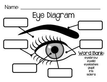 Eye Diagram To Label Kifd by Eye Diagram Ylli