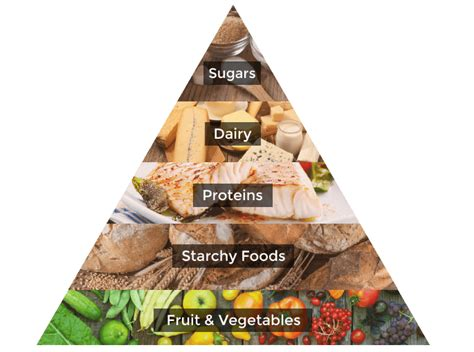 tringle cuisine the healthy pyramid explained high speed