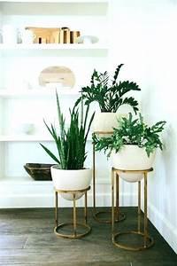 In Stand Setzen : indoor plant pots modern interior indoor ~ Lizthompson.info Haus und Dekorationen