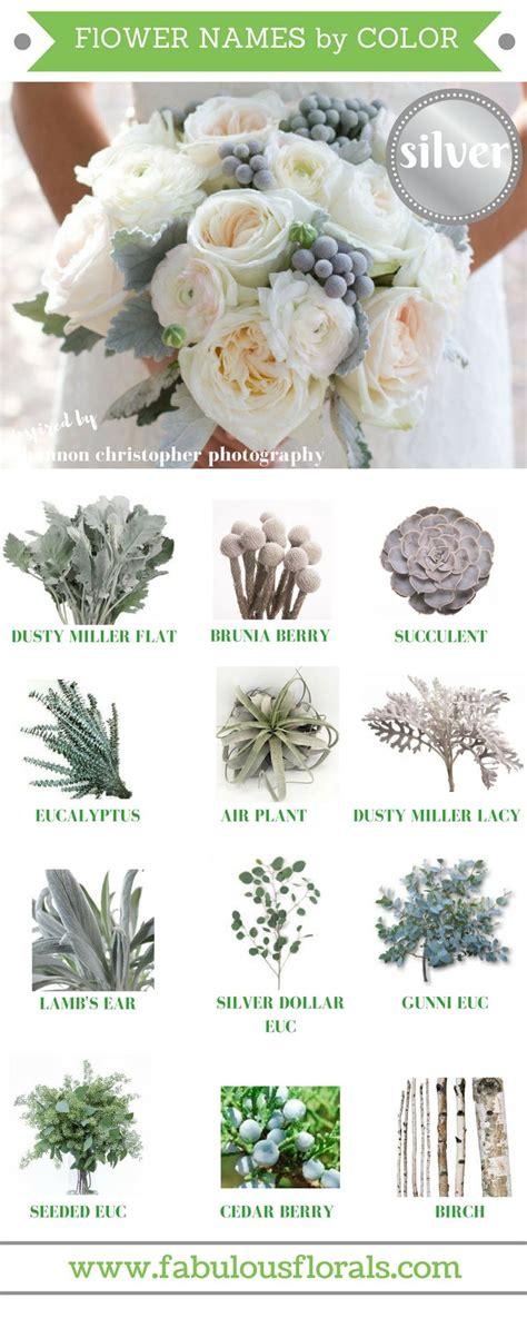 grey flowers ideas  pinterest dusty miller