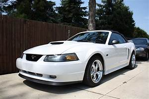 My 2002 Mustang GT Convertible | Ford mustang gt, Mustang gt, Ford mustang