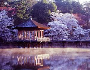 Nara, Travel, Costs, U0026, Prices