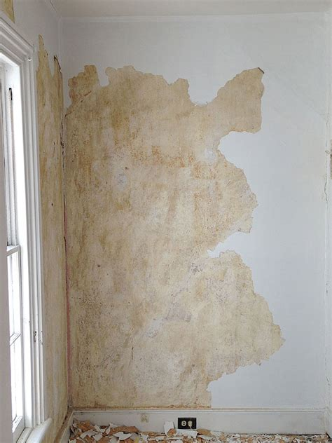 wallpaper   gallery