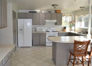 Paint Ideas For Cabinets by Choosing The Best Painting Kitchen Cabinets Trellischicago
