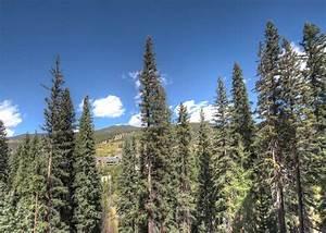 Lone Eagle #3017, Vacation Rental in Keystone CO | Summit ...