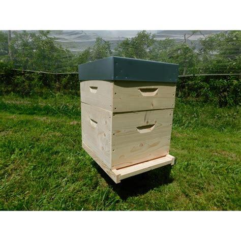 ruche dadant 10 cadres droit ruches dadant