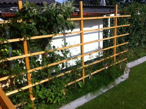 Selbst Gemacht Sichtschutz Fuer Den Garten by Sichtschutz Rankgitter Aus Holz F 252 R Den Garten Selber