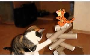 hochzeits make up selber machen katzenspielzeug selber machen ideen