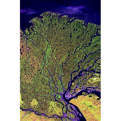 25  Best Ideas about Siberia Map on PinterestEarth view
