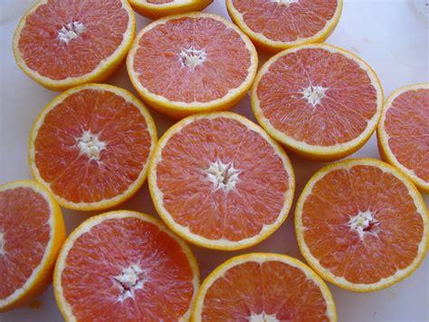 orange ruby varieties australia cara citrus grapefruit fruit western navel food star blood coloured season flesh