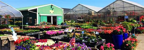johnsons garden center johnsons garden center macon fasci garden