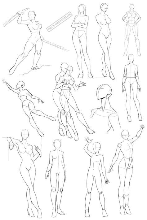 female anatomy   precia tdeviantartcom  atdeviantart