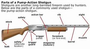 17 Best Images About Guns And Equip On Pinterest