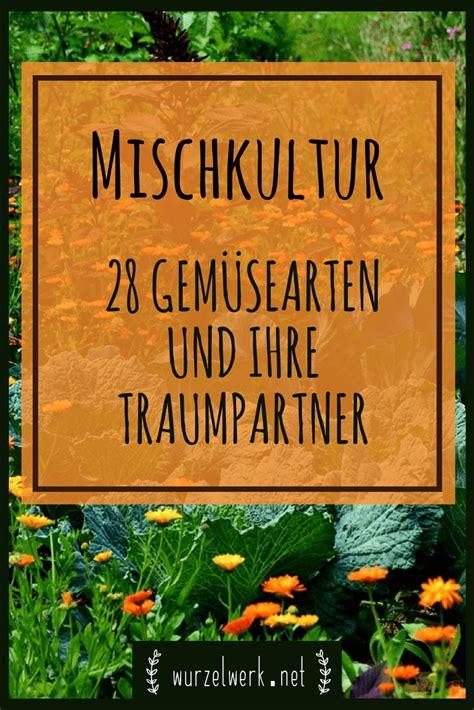 Garten Pflanzen Verträglichkeit by Mischkultur Im Gem 252 Segarten 28 Wirksame Mischkultur