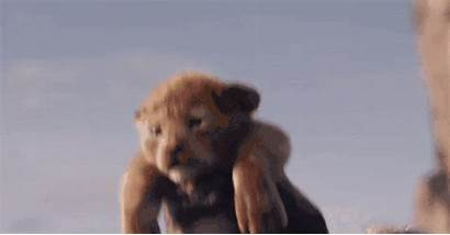 Cutest Entertainment Characters Simba Ranking Lion King
