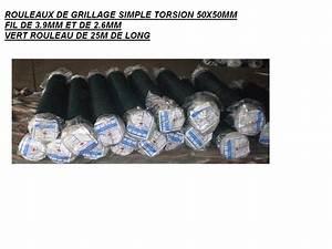 Grillage Simple Torsion Galvanisé : grillage simple torsion galvanise plastifie vert ~ Melissatoandfro.com Idées de Décoration