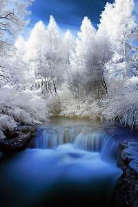 Breathtaking, Winter, Scene, U0026gt